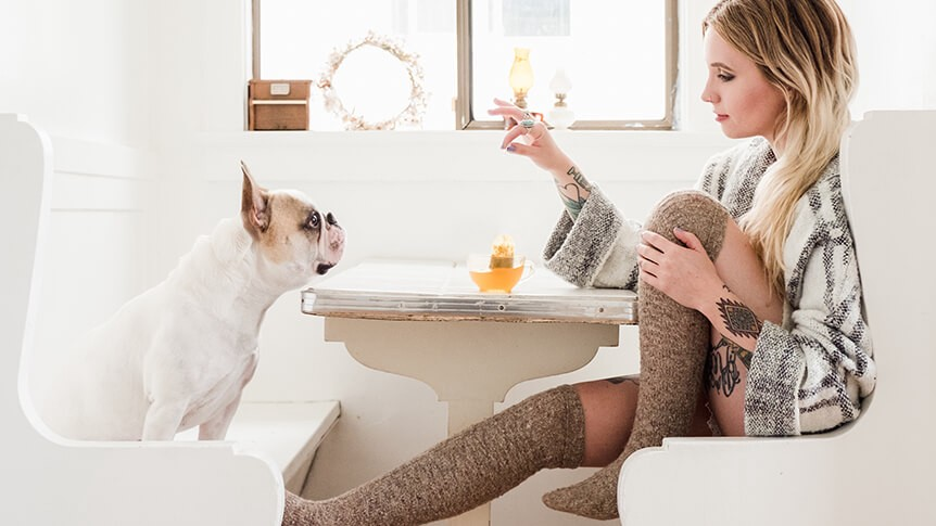 Blonde woman sat at breakfast table opposite dog
