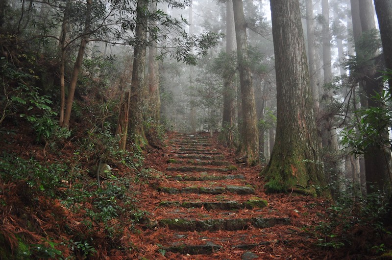 A misty trail along the Kumano Kodo pilgrimage route in Wakayama Prefecture