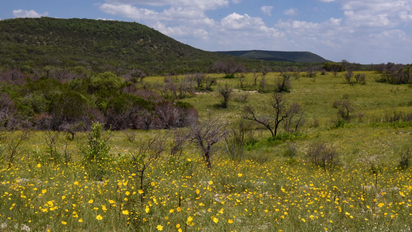 A landscape with oak savannah on the flats and juniper forest on the hill slopes