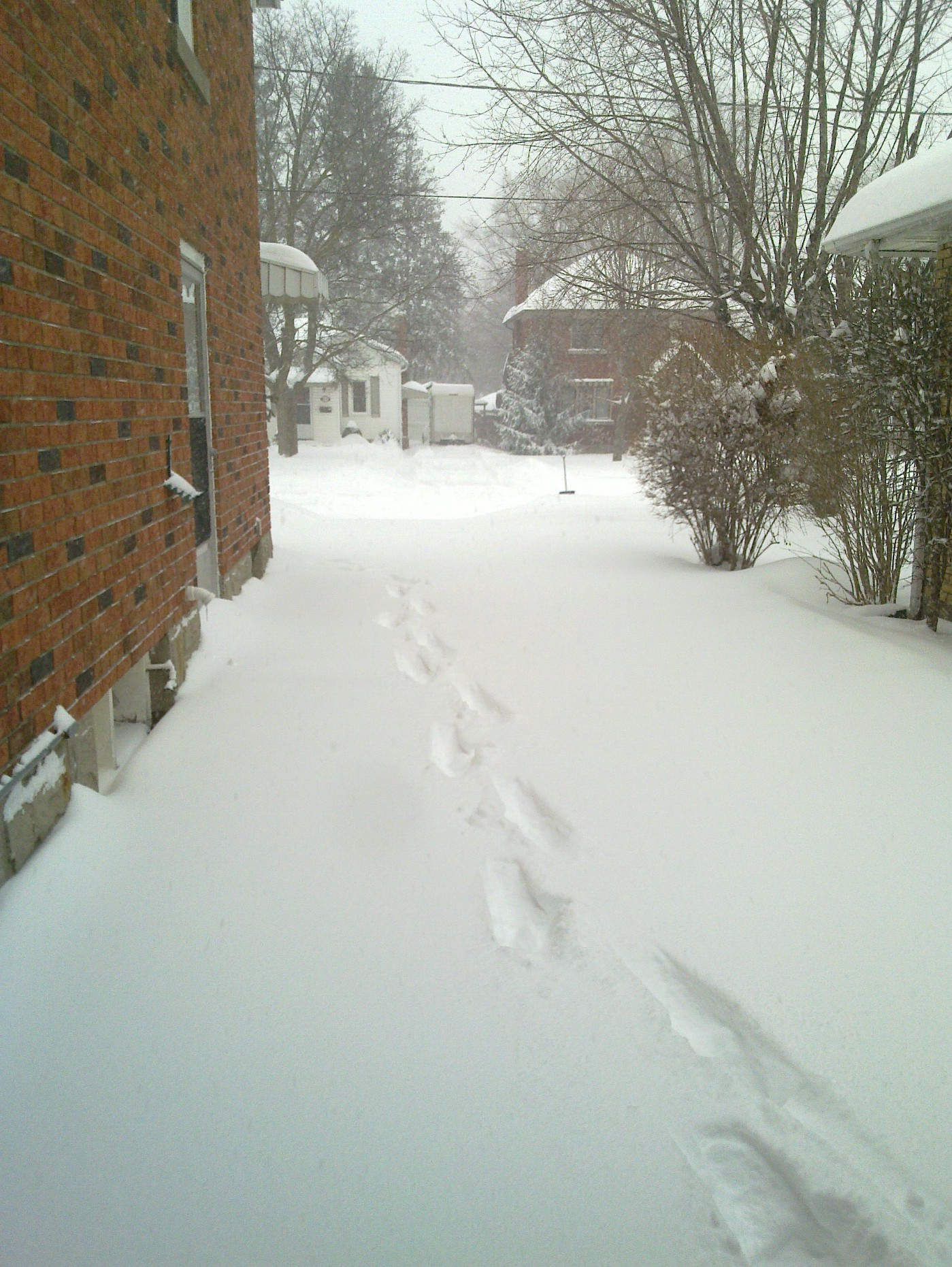 Snowy driveway between houses with footprints leading to the road.