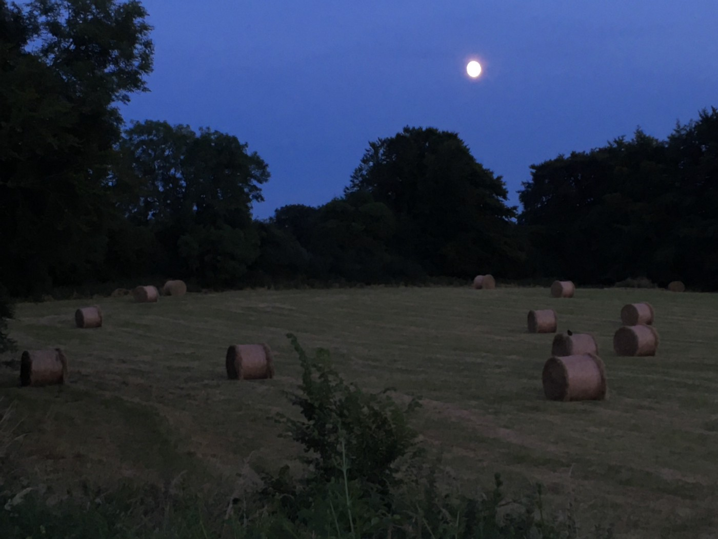 A countryside field littered with bales, the full moon above.