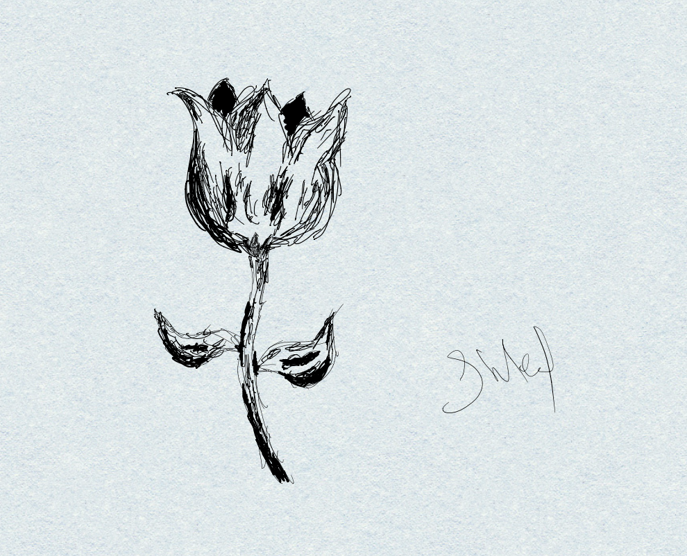 A drawing of a rose, created with the Notability app on iPad