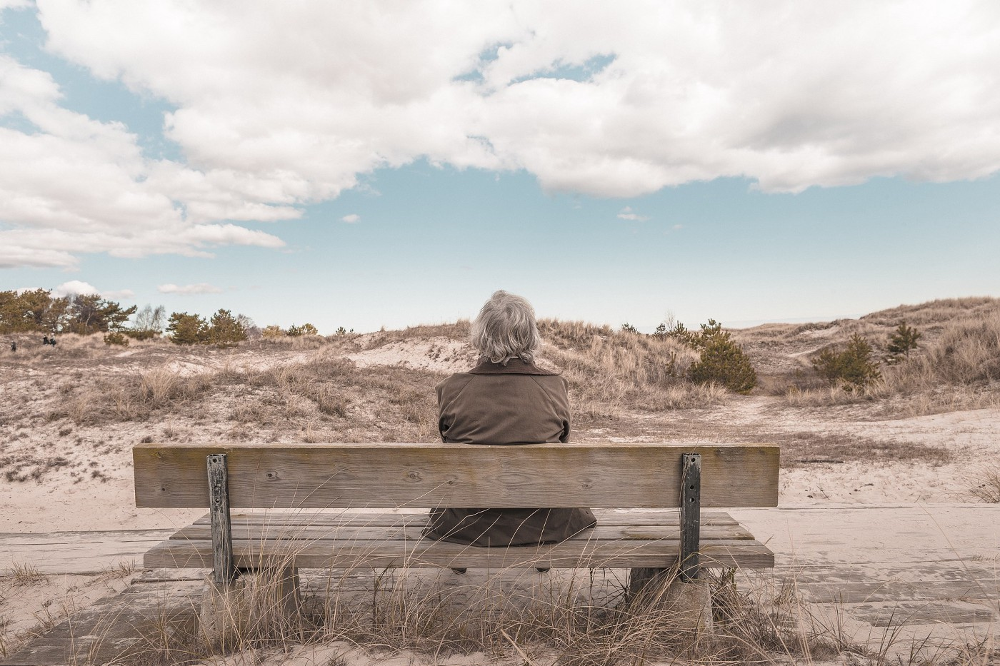 Person with grey hair and brown jacket sitting on a bench facing away and looking at the horizon.