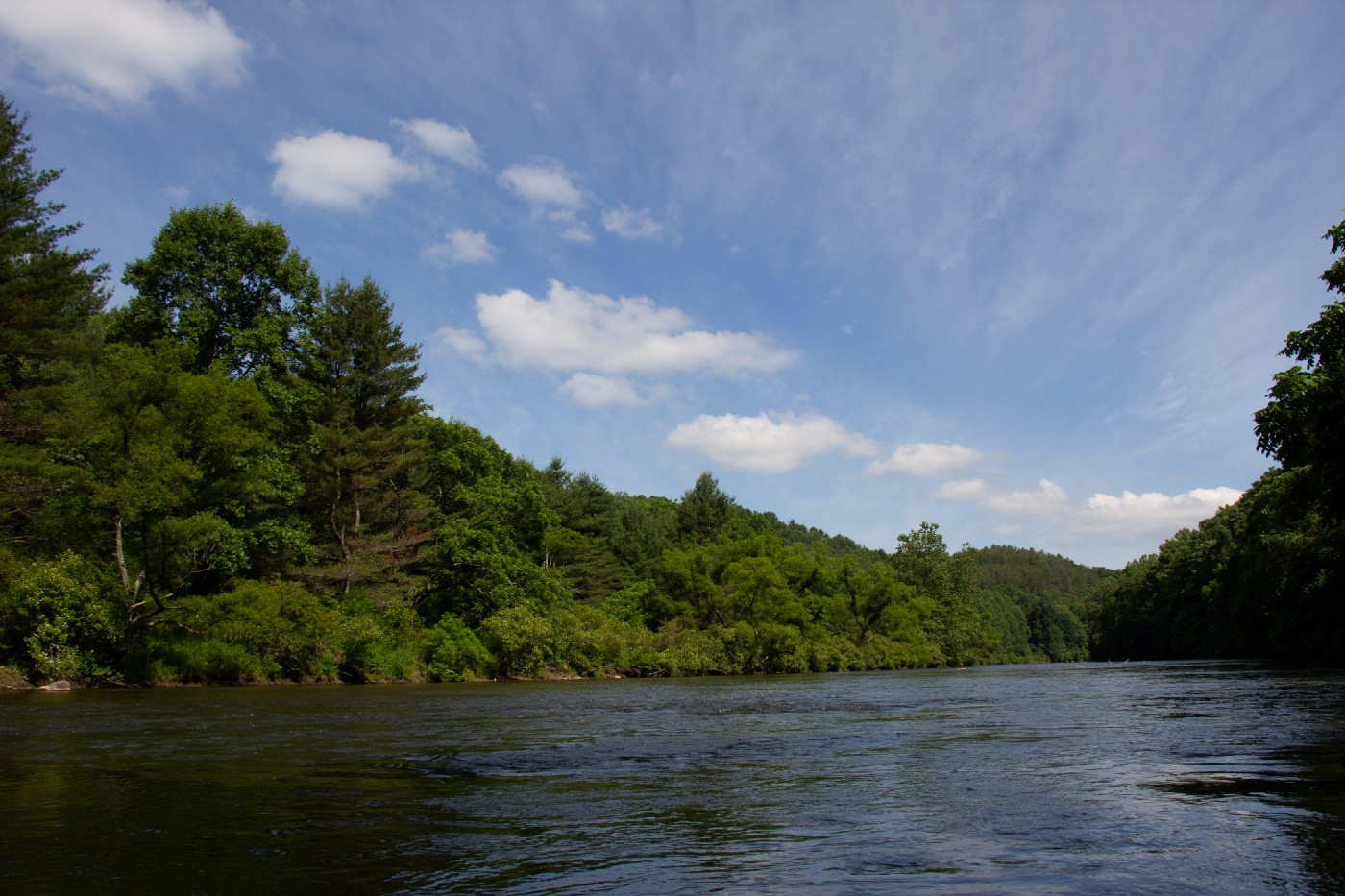 A landscape view of the New River, with blue skies, clouds, green trees, and blue waters