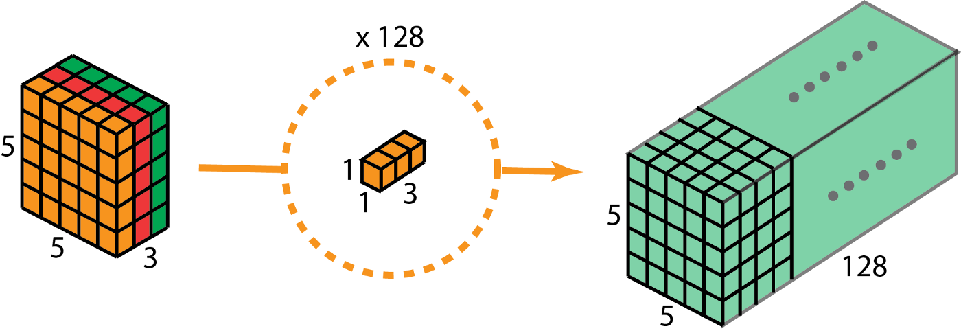 A Comprehensive Introduction to Different Types of Convolutions in