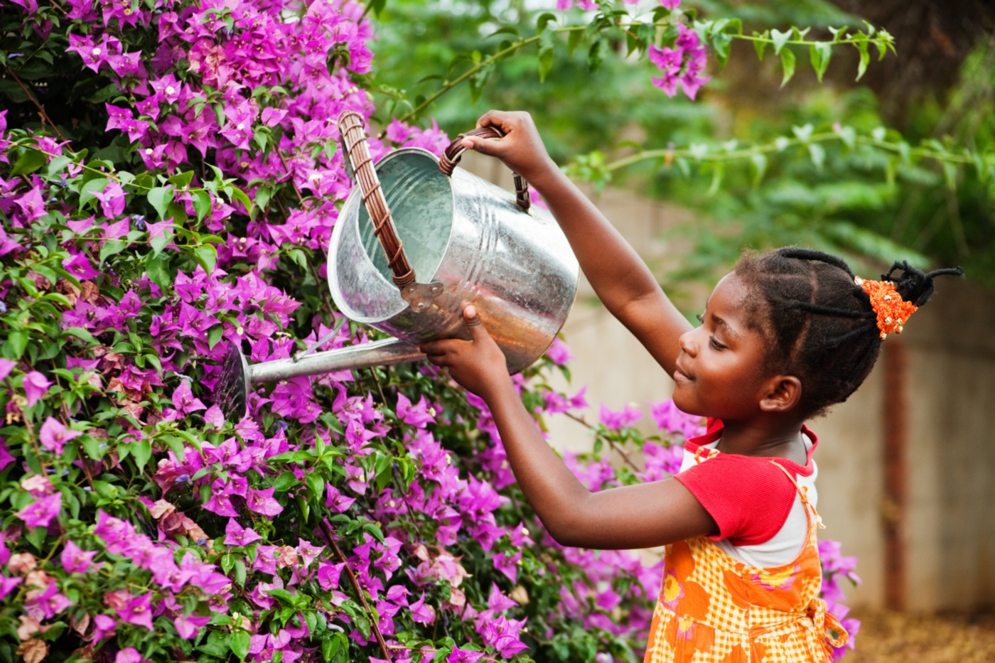 A girl waters plants.