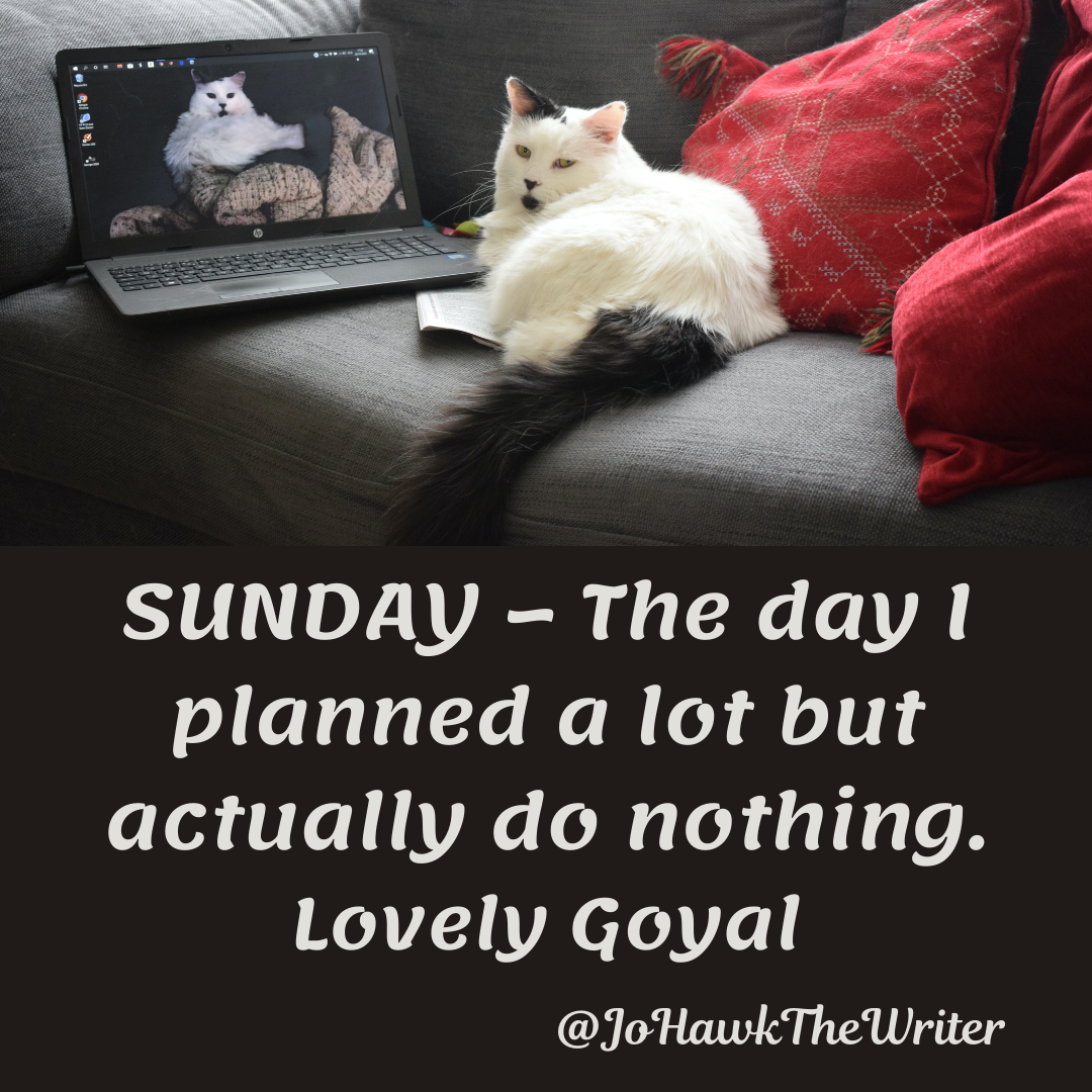 SUNDAY—The day I planned a lot but actually do nothing. Lovely Goyal