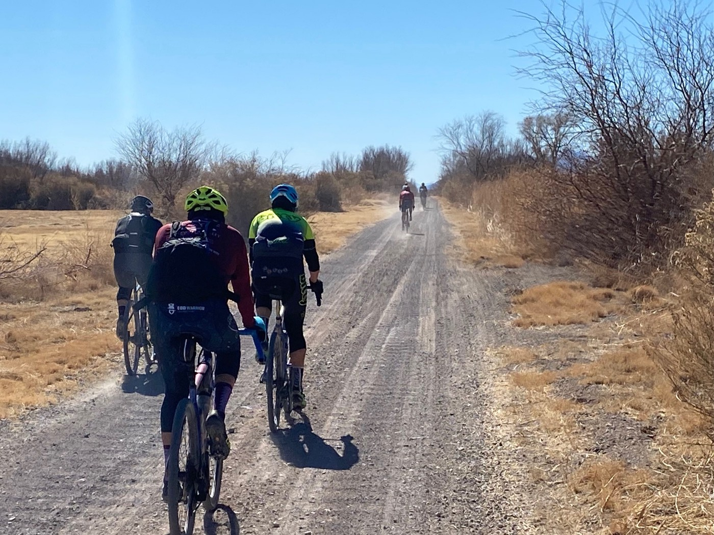 Five bike riders riding on a trail in the desert
