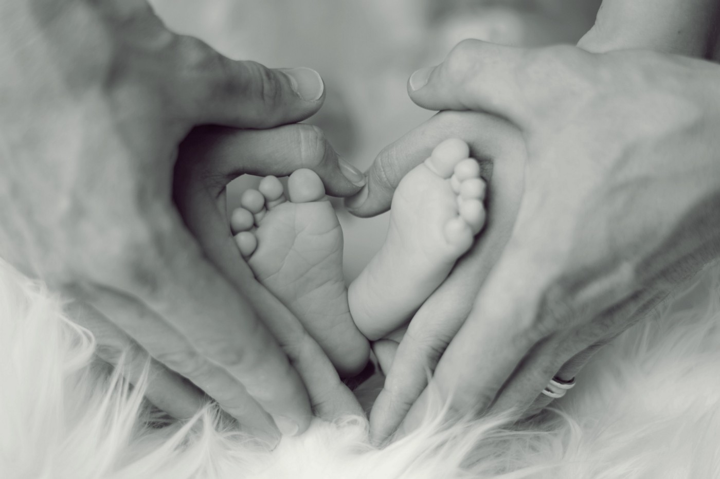 Baby's feet nestled in heart shaped hands