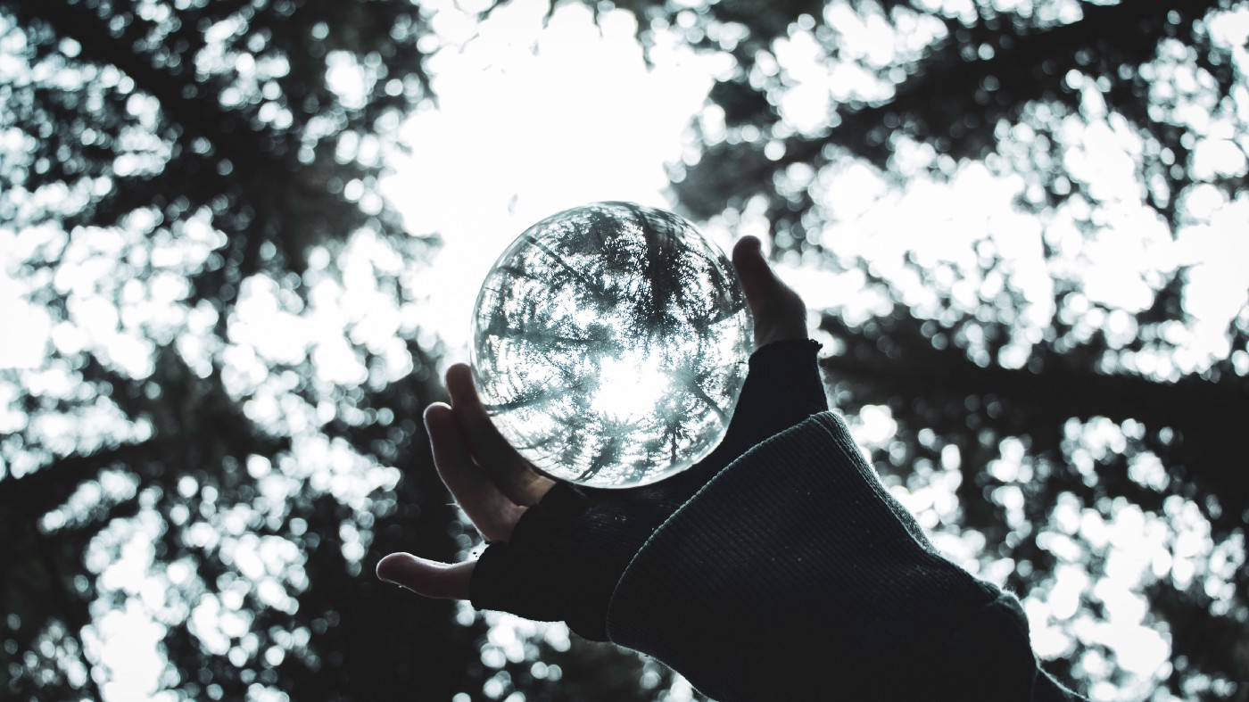 A hand holds a glass ball in a forest underneath some trees