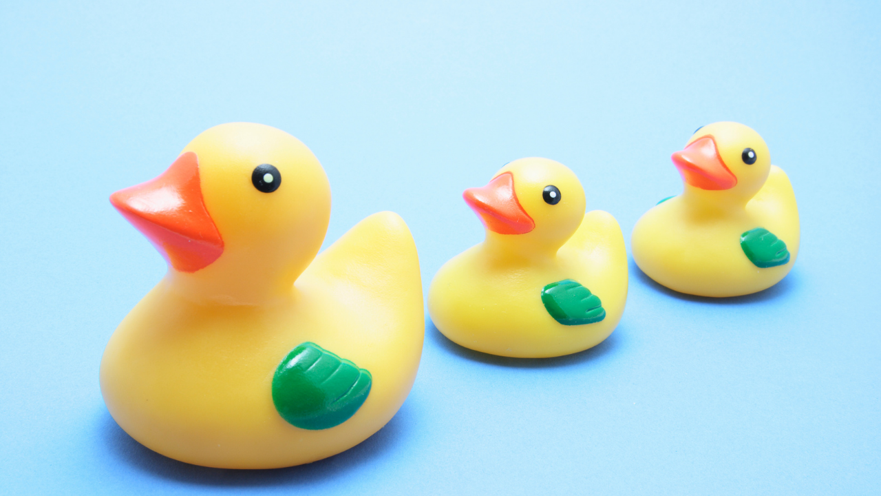 Three rubber ducks in a row—I Send Unsolicited Duck Pics