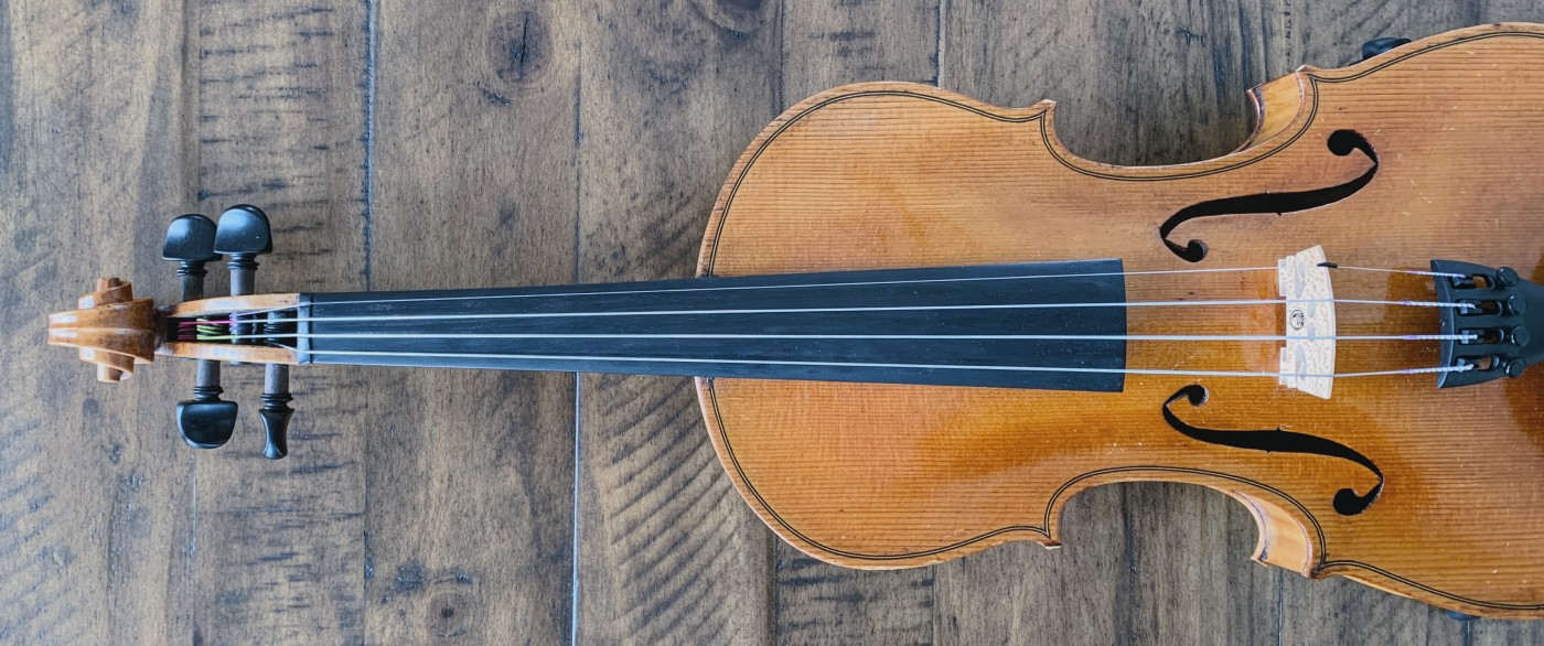 Photo of a the length of a violin, viewed from above