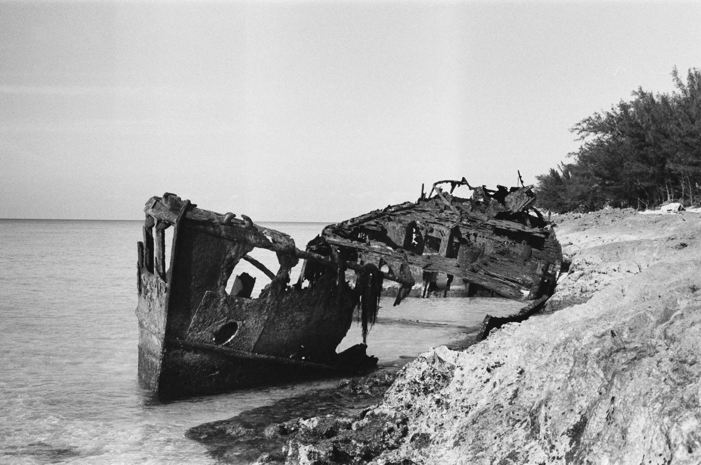 Black and white photo of an old shipwreck on a beach