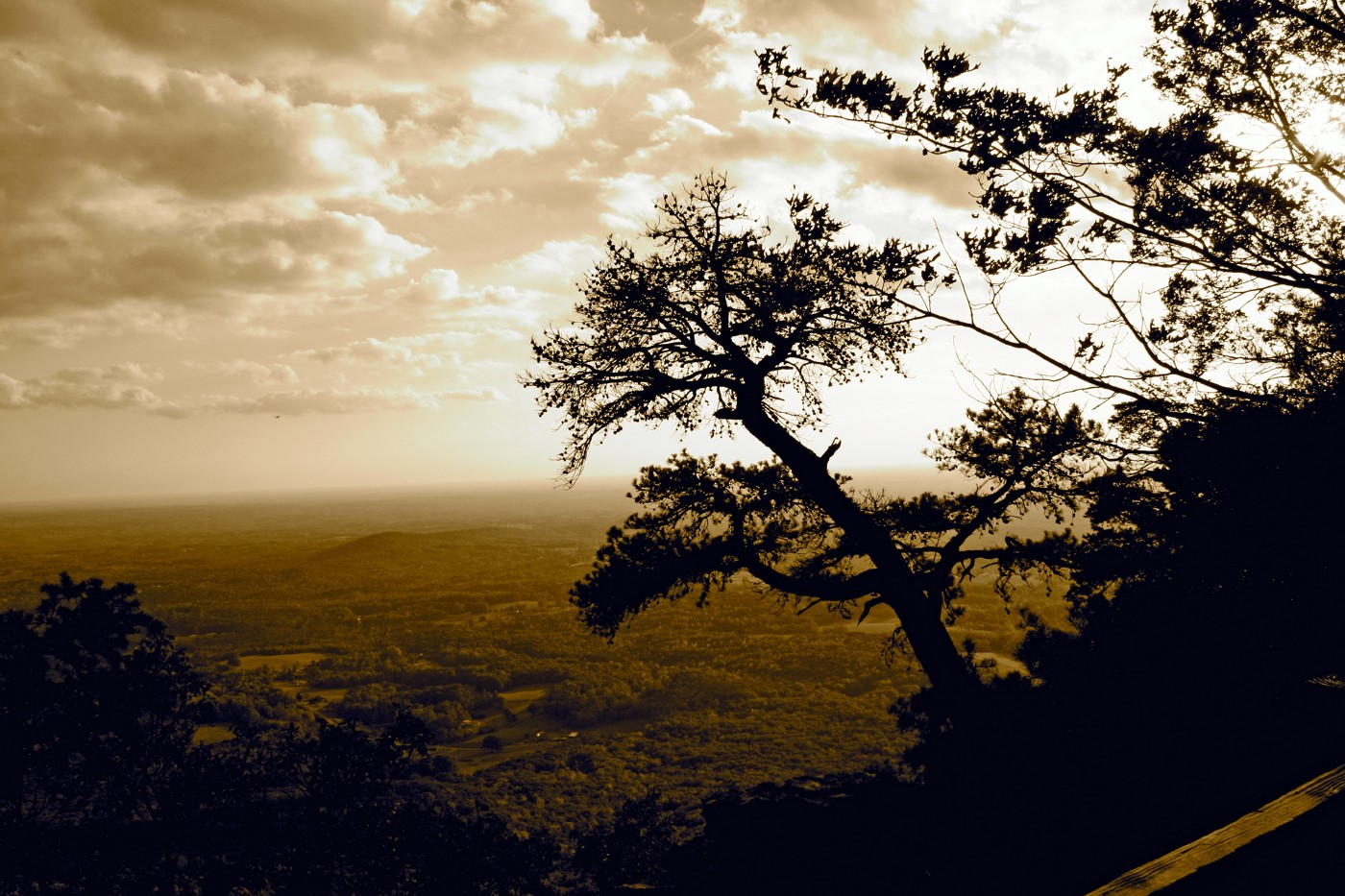 Sepia Pilot Mountain overlook with tree. artisticmysticsoul.com-Lisa Beth Wright
