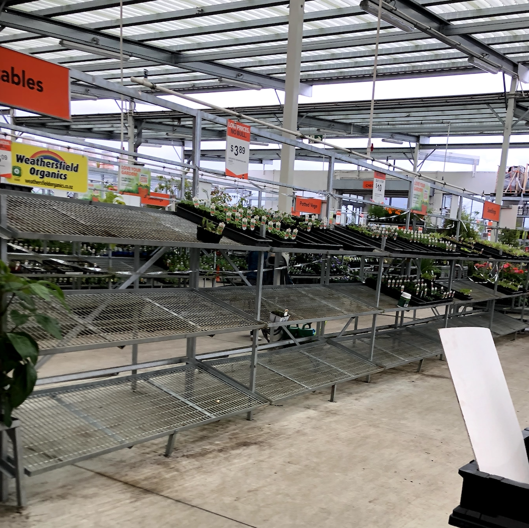 March 2020: when the shops ran out of vegetable plants right before lockdown began.