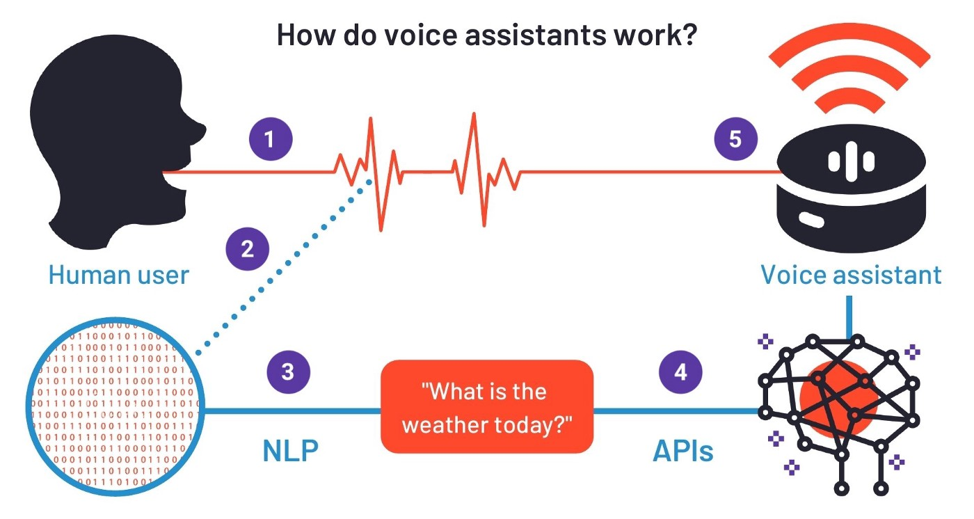 Figure 5: Conceptual overview of how voice assistants work (Screenshot, Pickell, 2019)