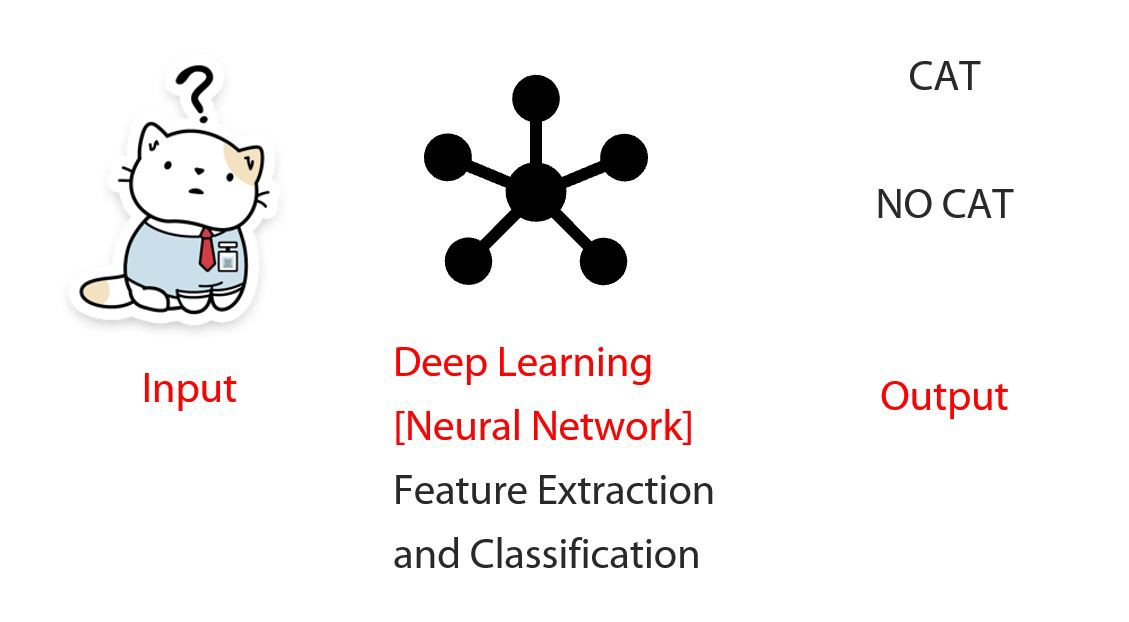 Deep Neural Network CAT feature detection and classification
