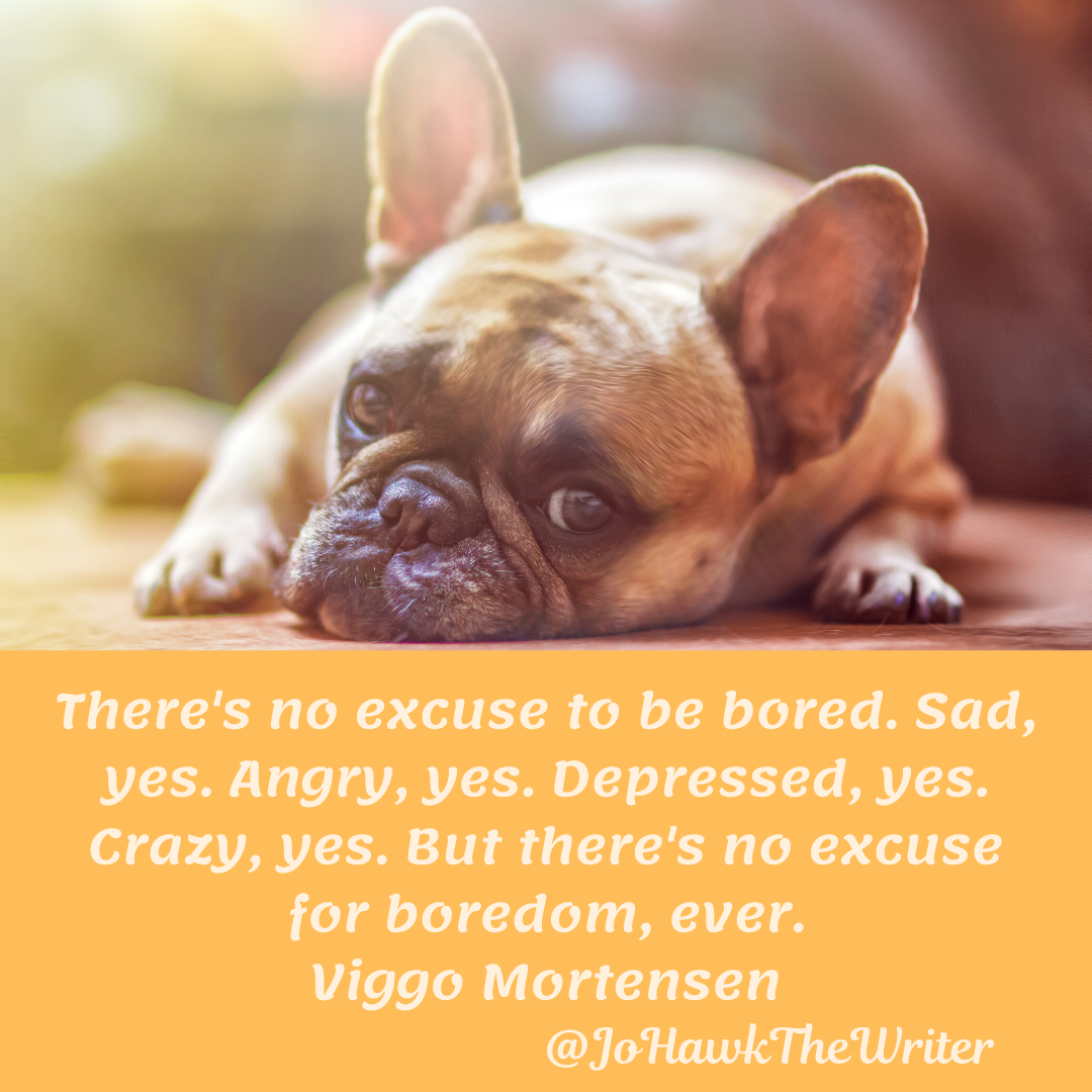 There's no excuse to be bored. Sad, yes. Angry, yes. Depressed, yes. Crazy, yes. But there's no excuse for boredom, ever. Vig