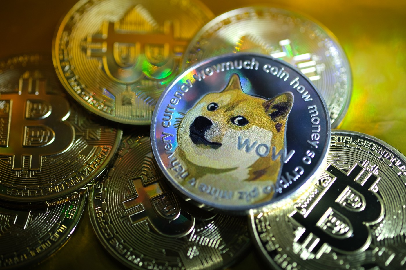 A conceptual photo illustration of a Dogecoin as physical currency.