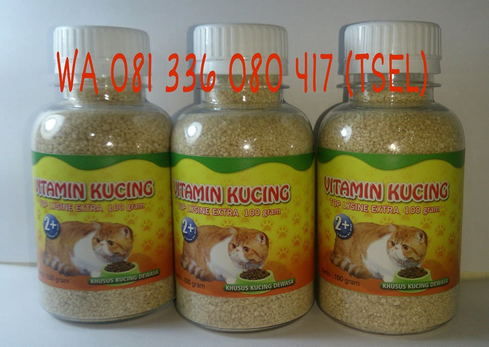Vitamin Kucing Agar Gemuk Medium