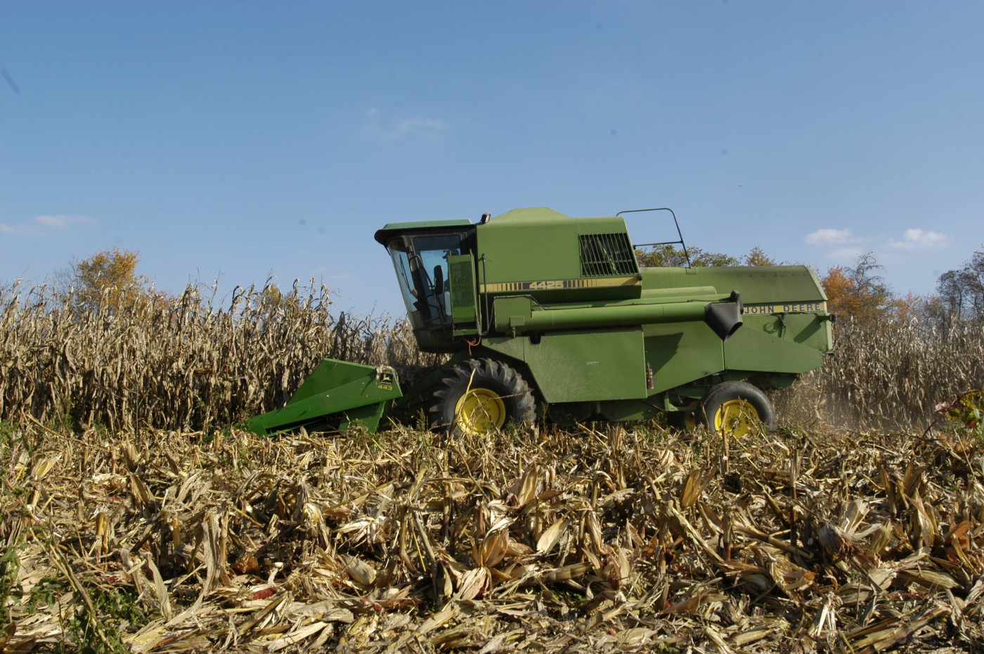 Image of corn being harvested in Maryland. Image by Edwin Remsberg