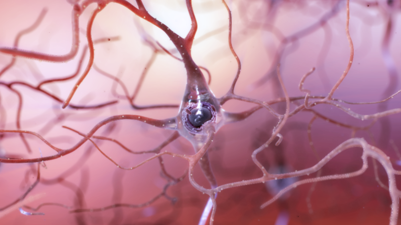 a pinkish-bluish neuron in the middle of a pinkish background with its branches branching out behind it
