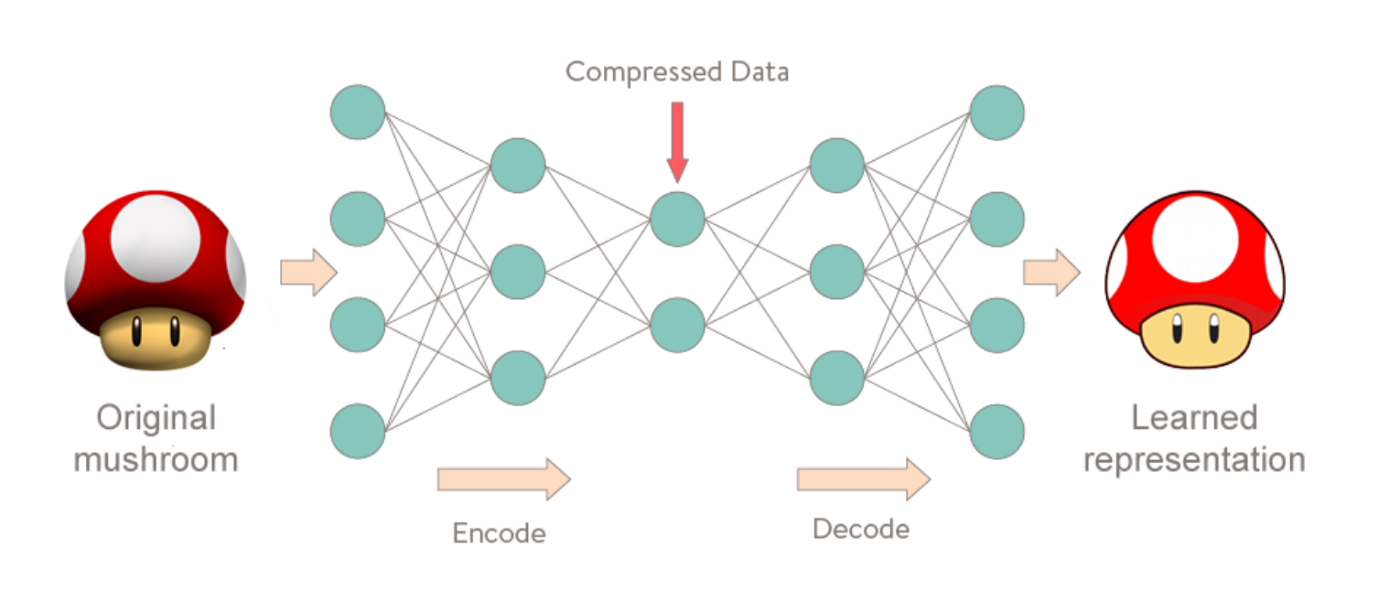 Neural Networks for Anomaly (Outliers) Detection - Good Audience