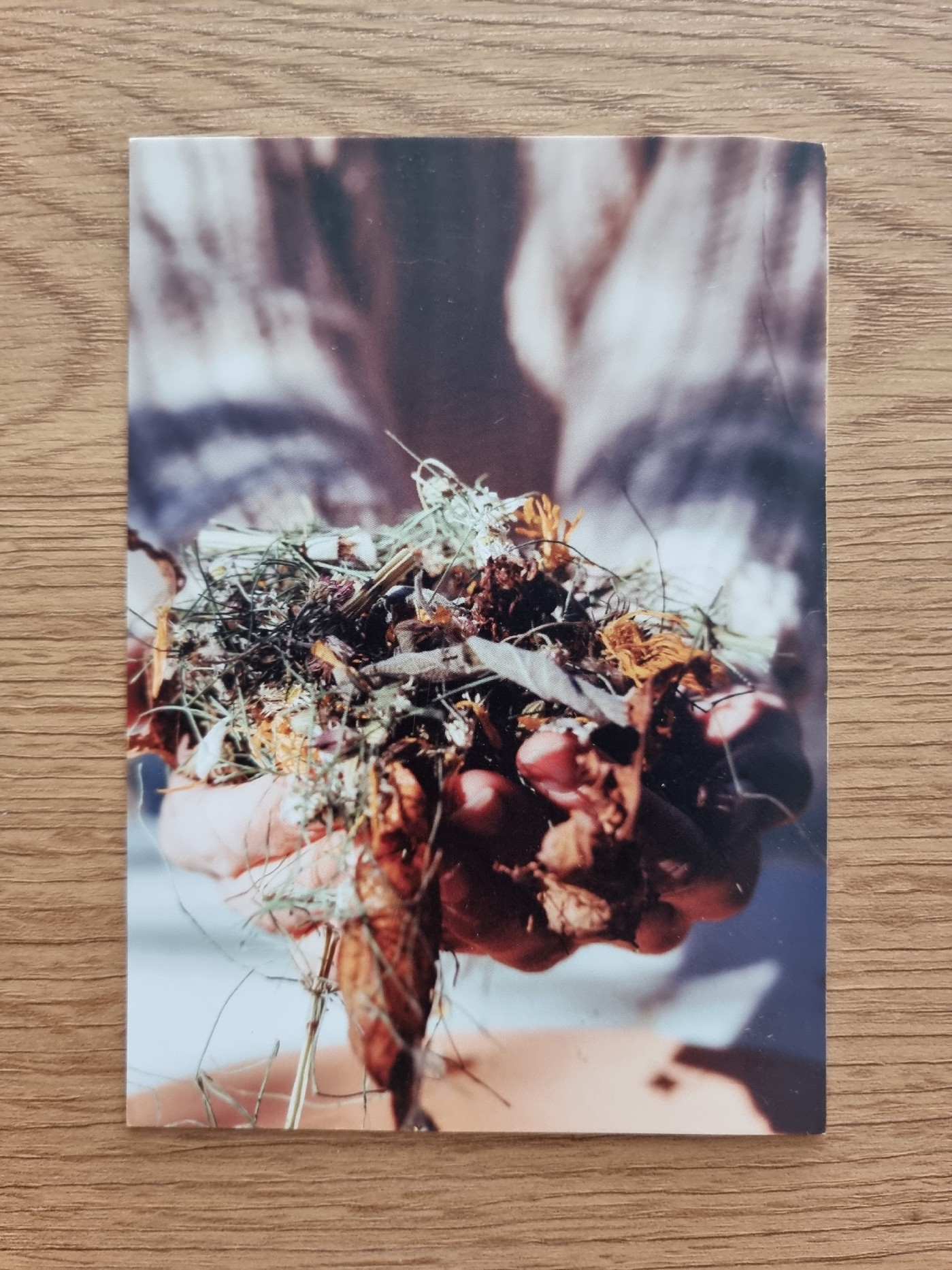 A close up image of a rustic bunch of wild flowers in a pair of hands