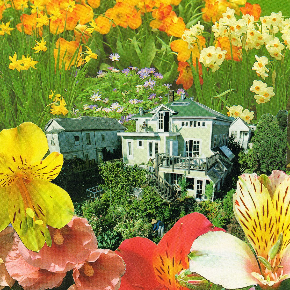 a collage depicting a tiny house surrounding by tall colourful flowers
