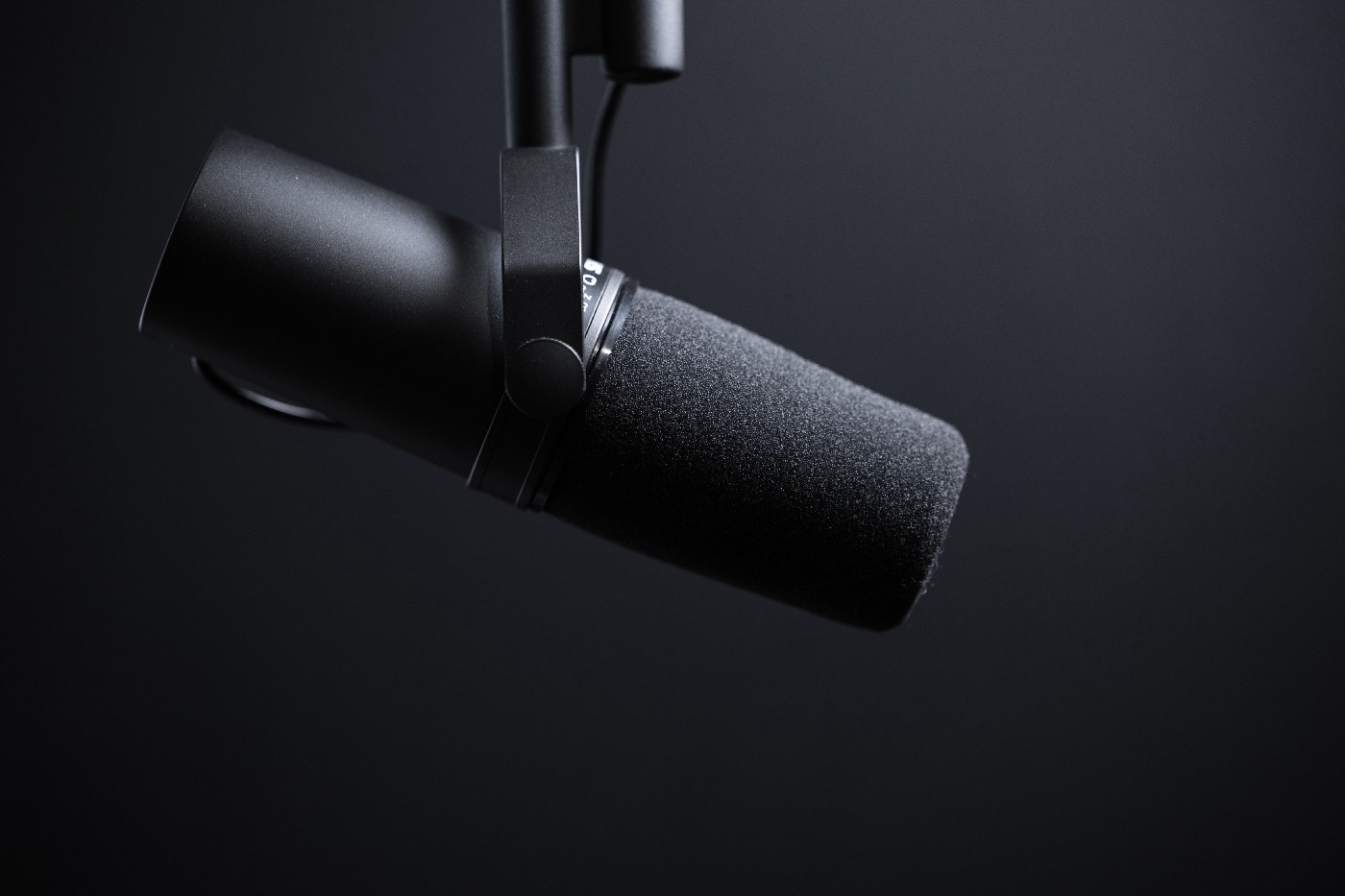 Podcaster Anne Muhlethaler of Out of the Clouds posts photo of a podcast mic