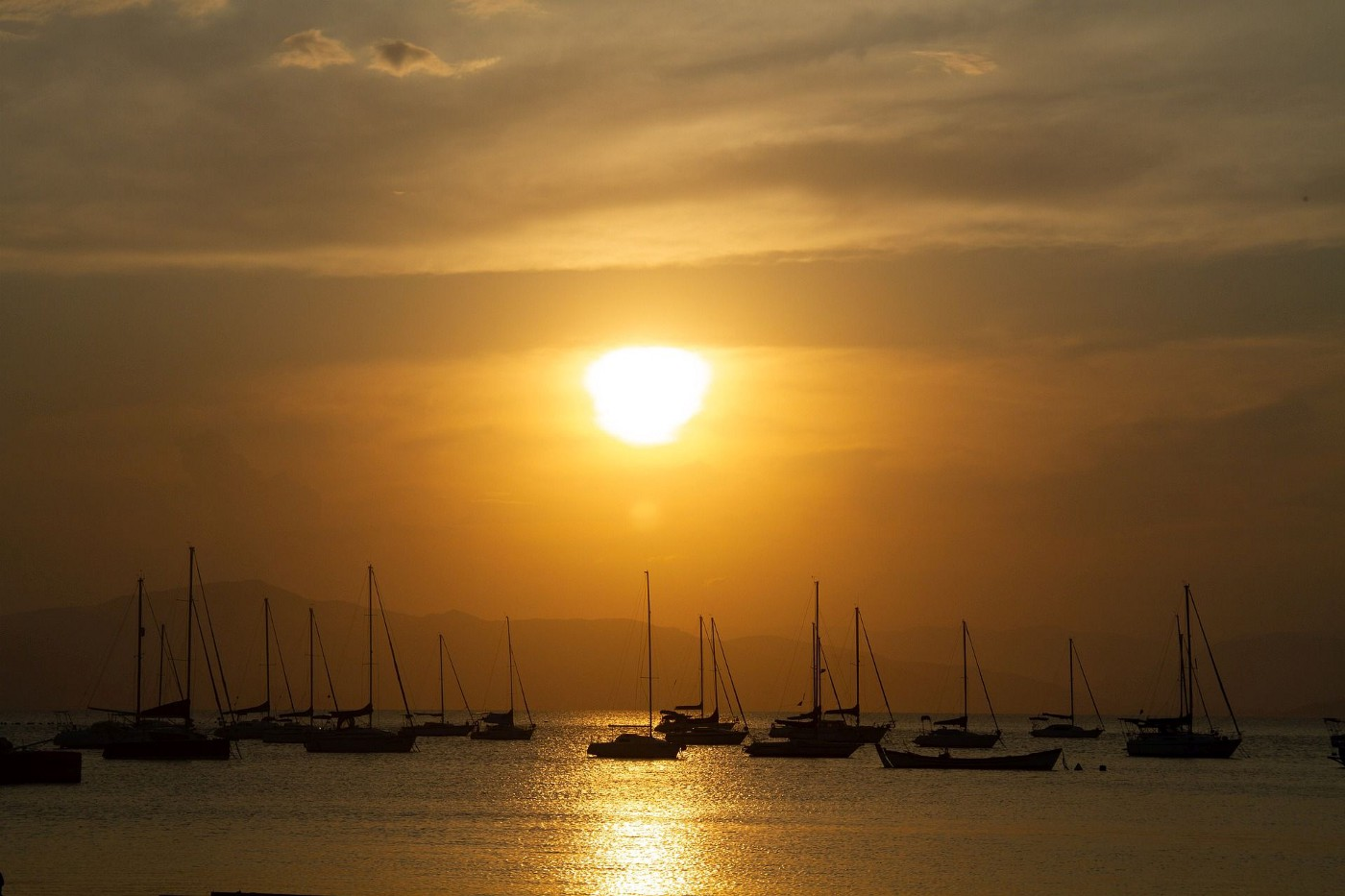 A bronze sunset with a group of sailboats in the foreground