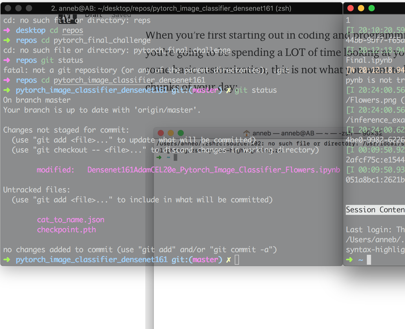 Trick Out Your Terminal in 10 Minutes or Less - Towards Data Science