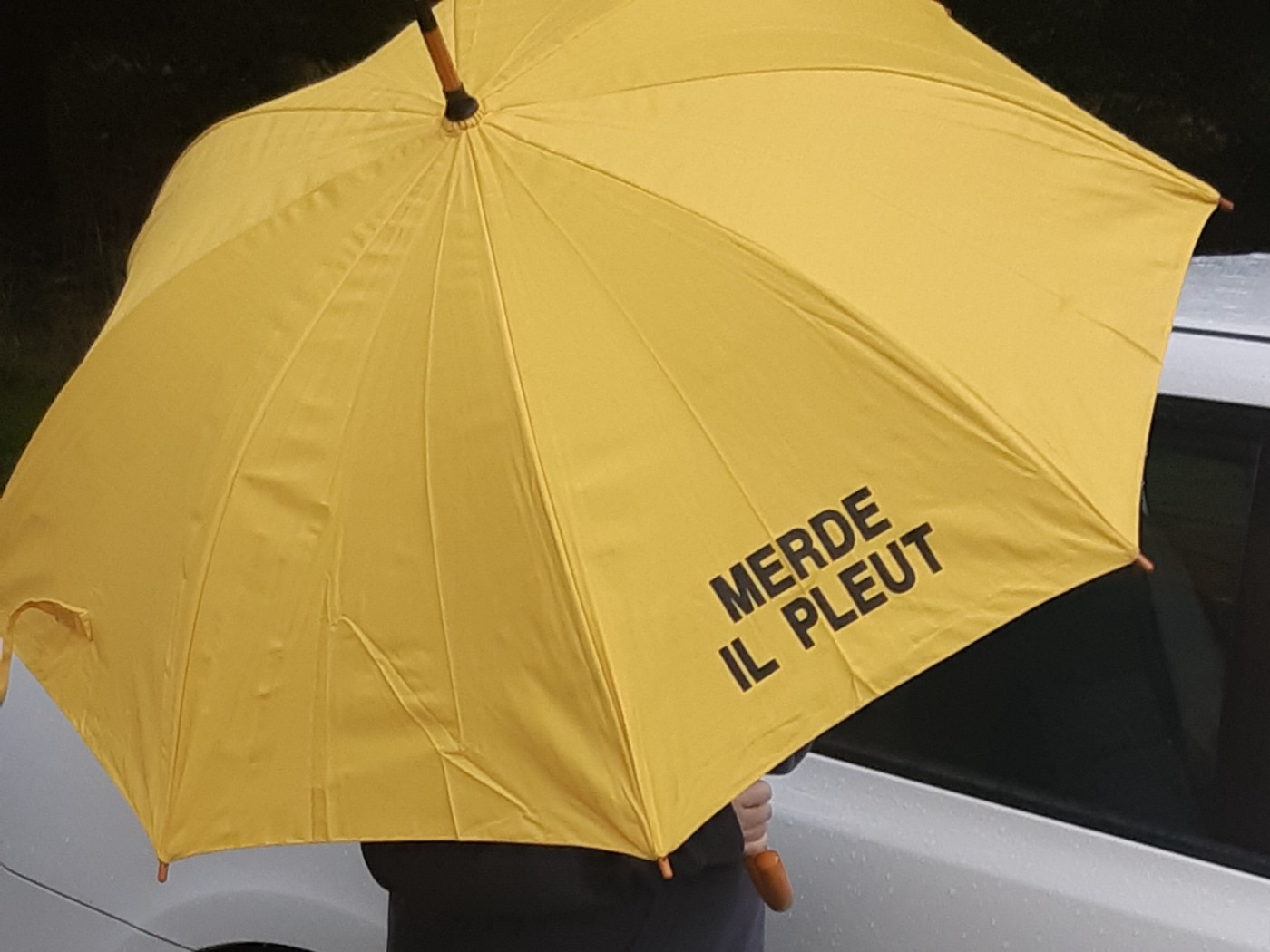Image shows a large yellow umbrella with the words 'Merde il pleut' (shit, it's raining) on it.