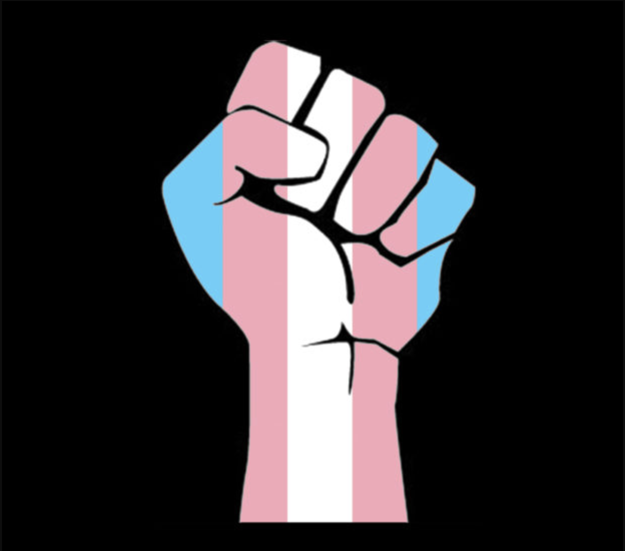 Drawing of upraised fist with trans flag colors