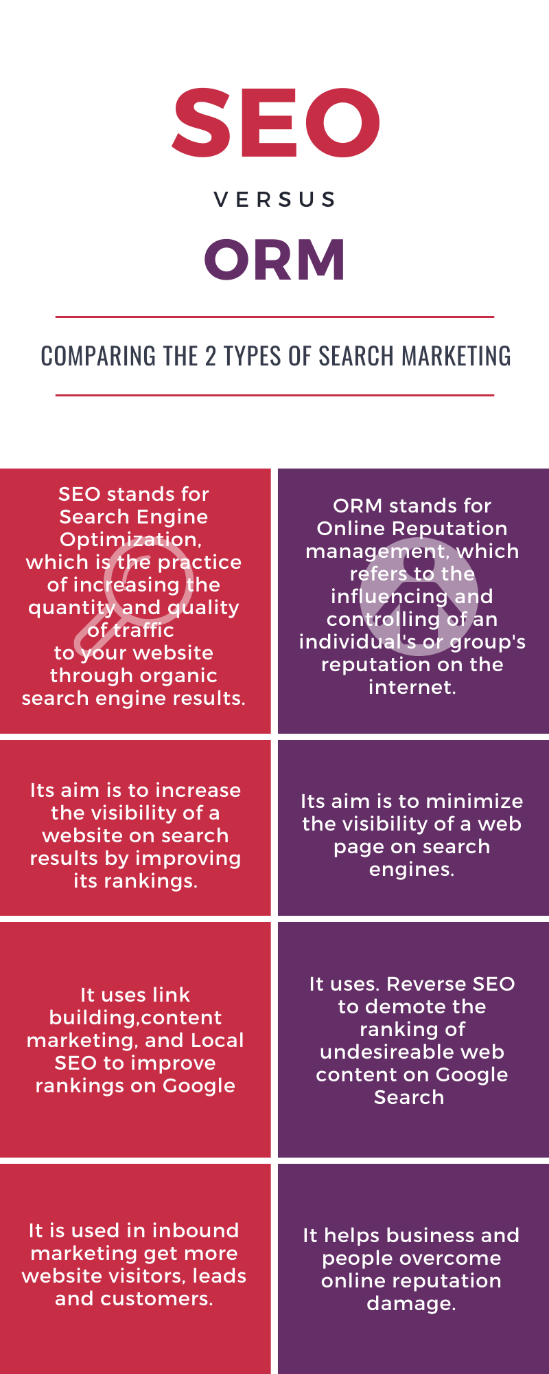 SEO and ORM Infographic