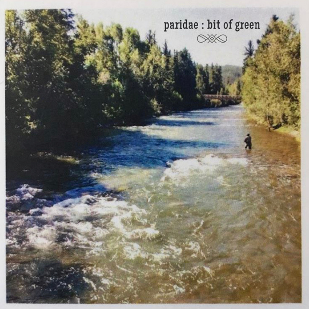 Album cover for Bit of Green by Paridae. A man fly fishing in a mountain stream