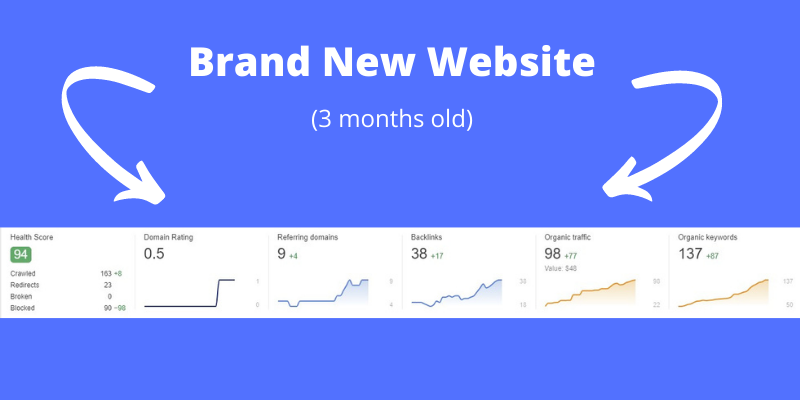 """Screenshot of Ahrefs dashboard for a new website already ranking in Google—I Found a Google """"Loophole"""" To Rank New Websites (With Proof)"""