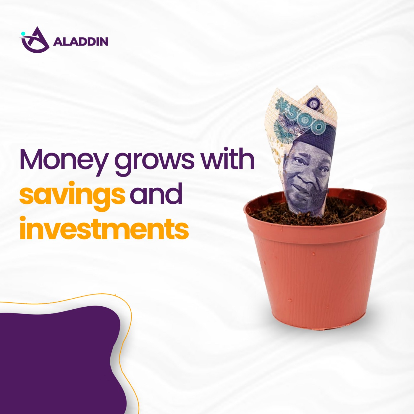 Money grows with savings and investment (with photo)