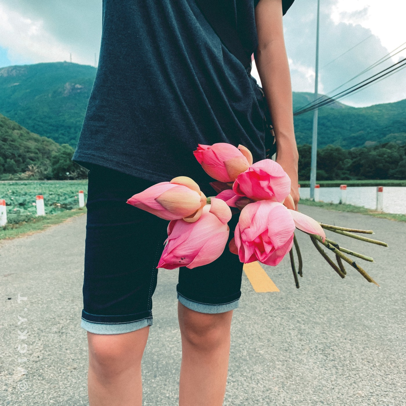 Photo of a woman holding a bunch of roses. The shot focuses on the pink roses and just shows the woman's midsection. Mountains in the background.