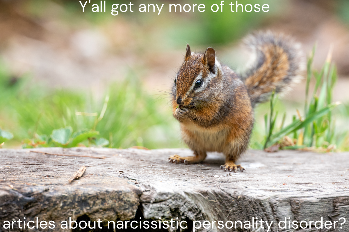 """Picture of a cute chipmunk with words that say """"Y'all got any more of those articles about narcissistic personality disorder?"""""""