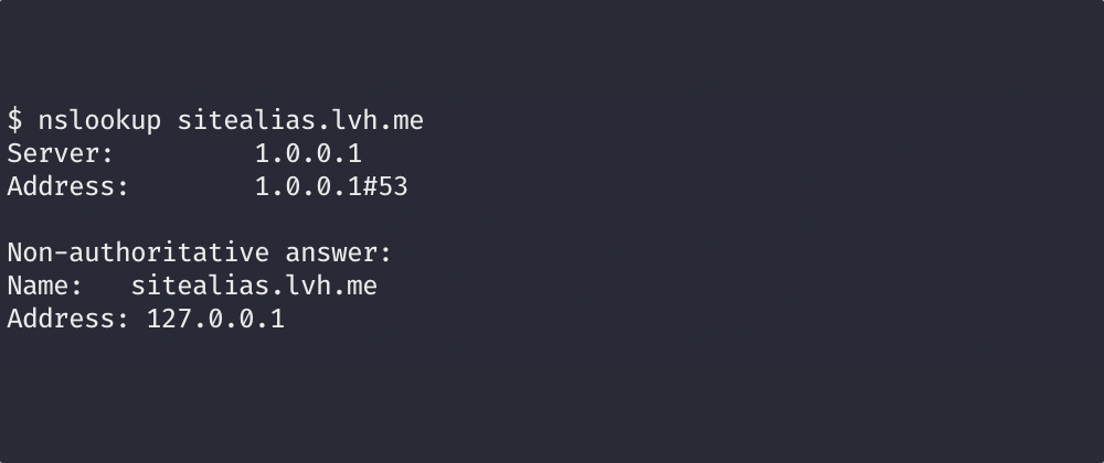 Example of a DNS lookup resolving to 127.0.0.1