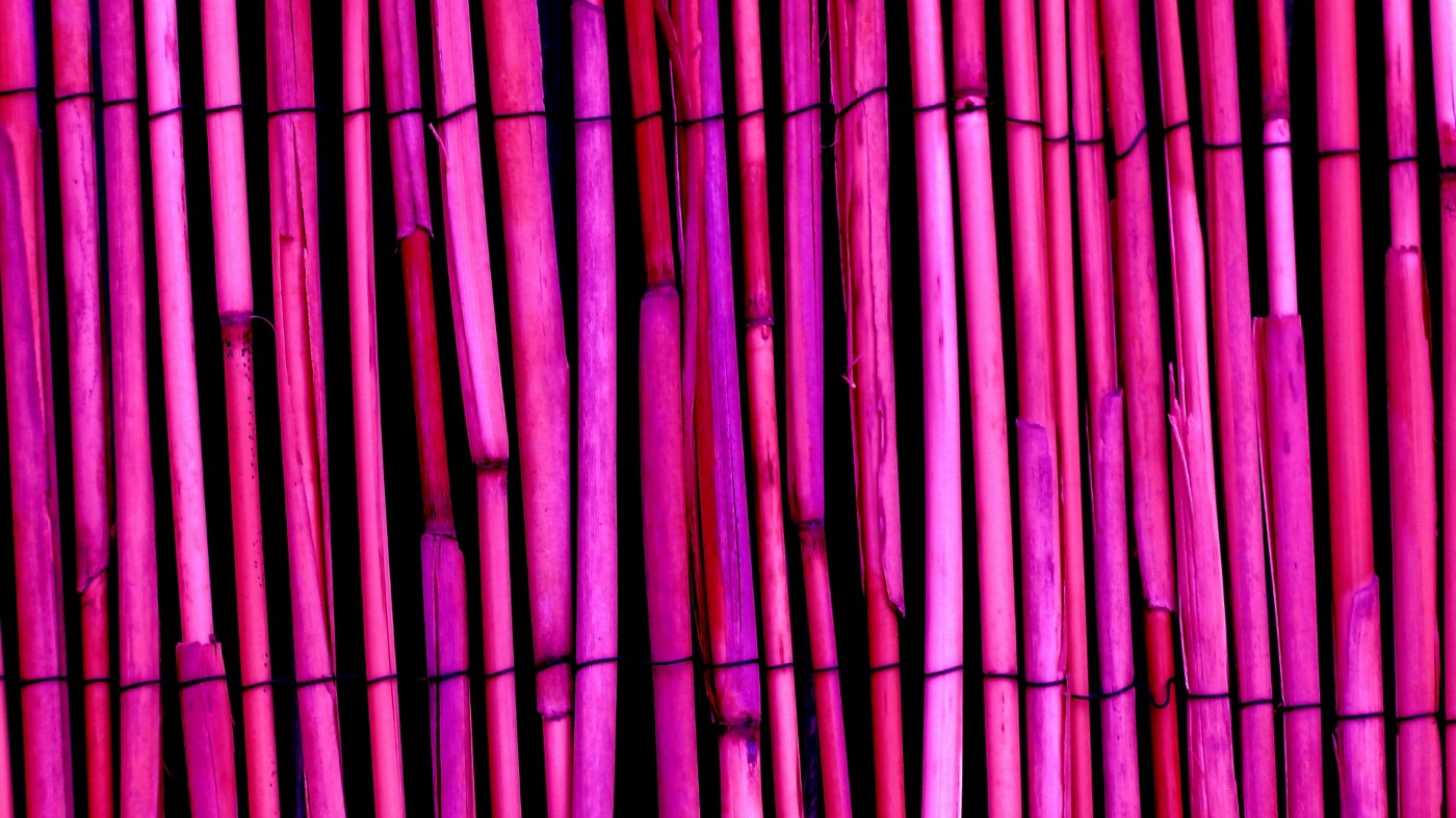 a set of purple bamboo sticks laid in an array