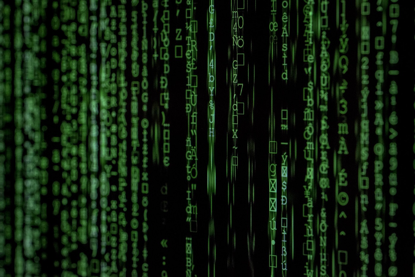 Inside the Matrix: (bits and bytes from a computer screen)