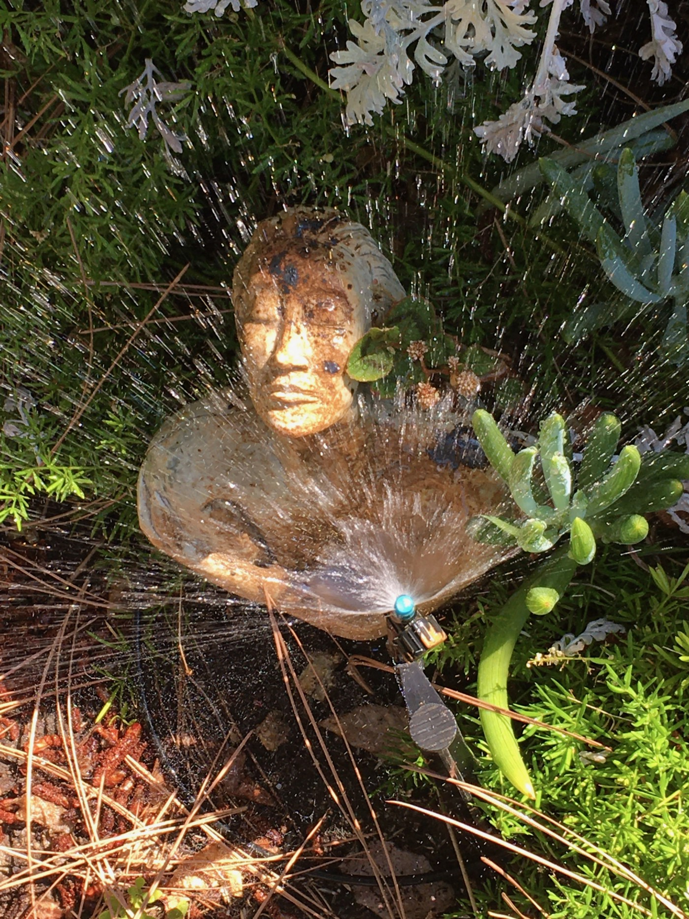 Sculpture of woma with hands reaching across chest together, eyes closed, sprinkler sprinkling water ovr her. She sits by cactus and lants.