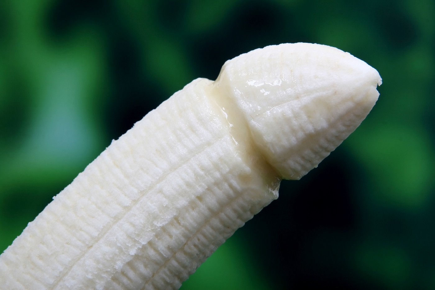 Close-up of a banana carved to look like a penis.