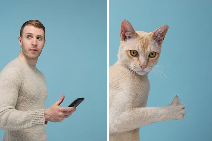 On the left, a guy checking his phone with his thumb in the air. On the right, a handsome light orange cat lifts a thumb