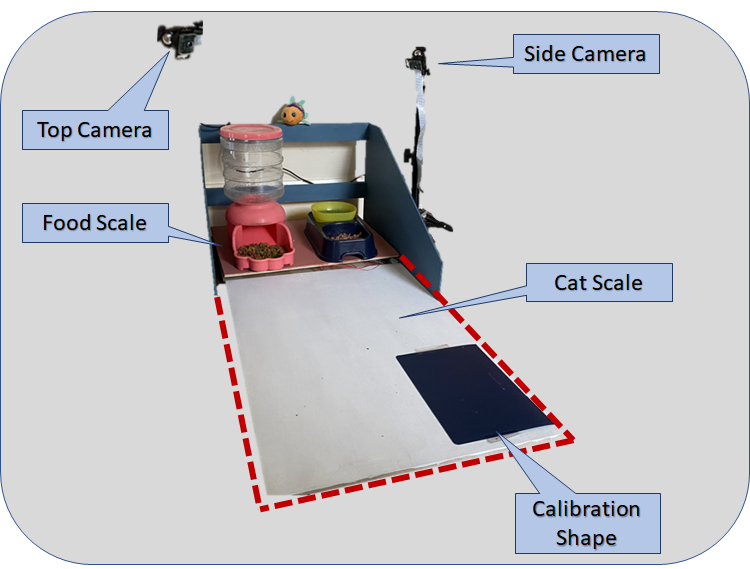 Diagram indicting two scales and camera placement