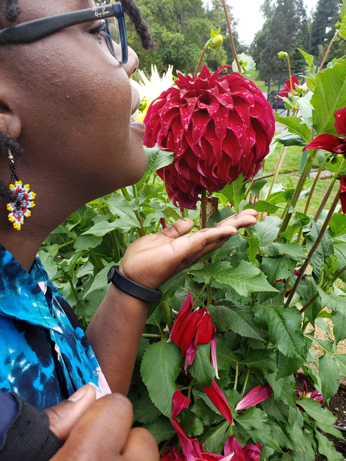 Author smelling a big red flower.