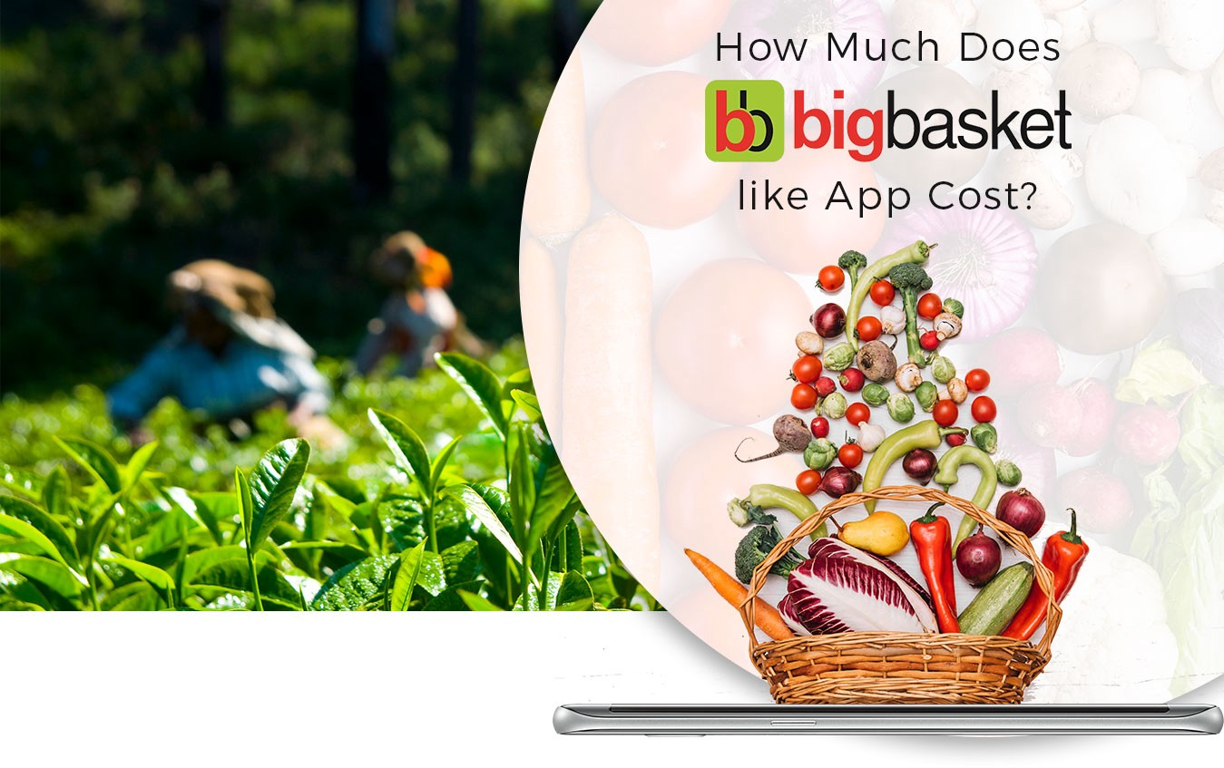 How Much Does It Cost to Develop an App like Big Basket/ Grofers