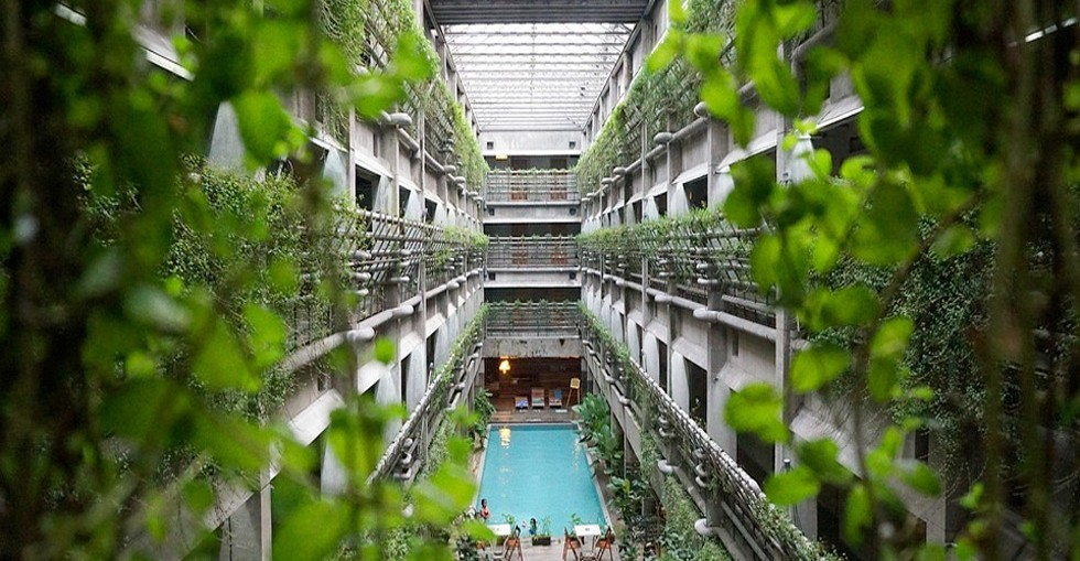 We're looking at the inside of a large building. Skylights flood the space with natural light. The walls are covered in fresh green vines and leaves. There's a swimming pool in the middle of the space. There are loungers at the far end of the pool and tables and chairs at the end nearest to us. People are sitting at the tables.